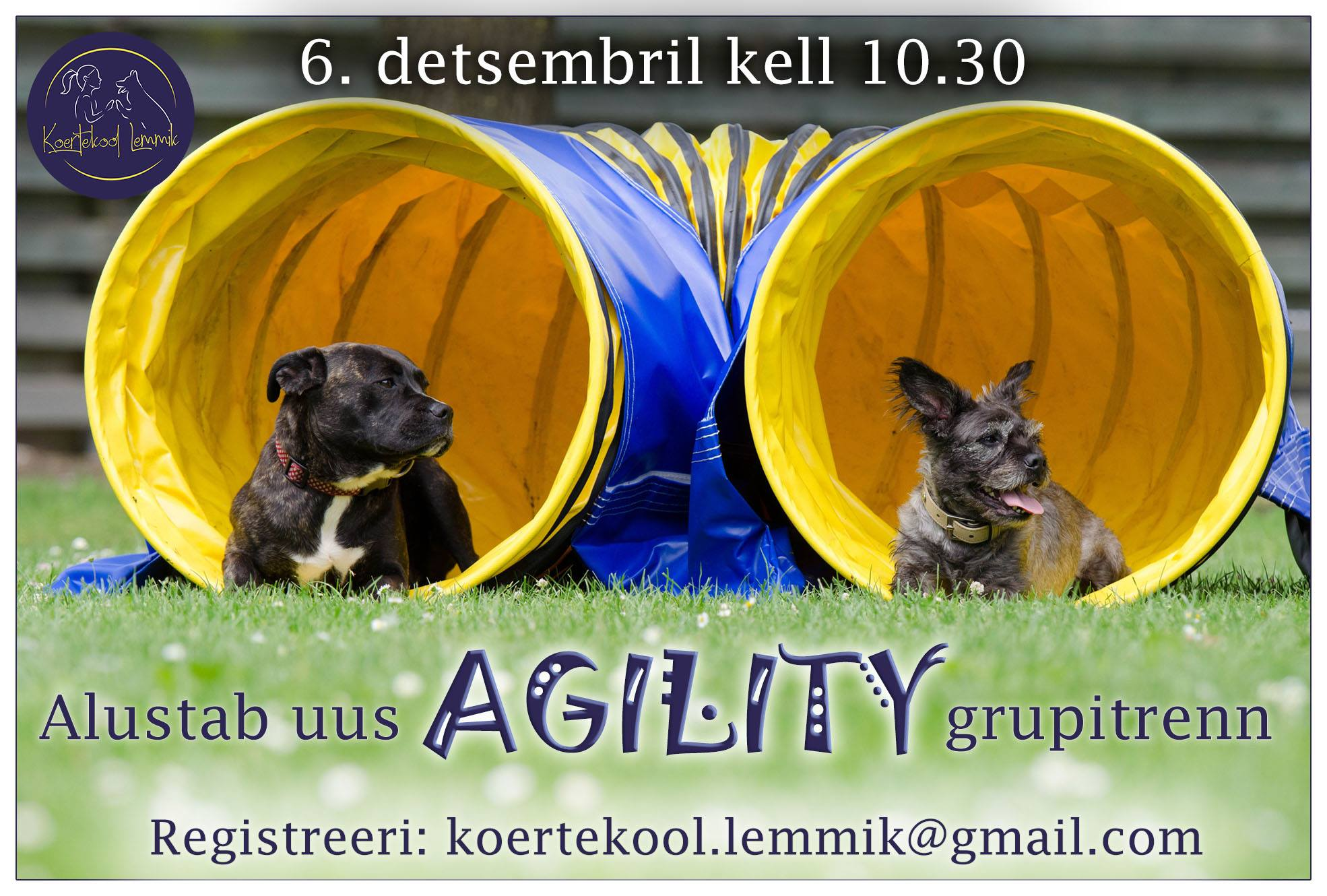 agility dets